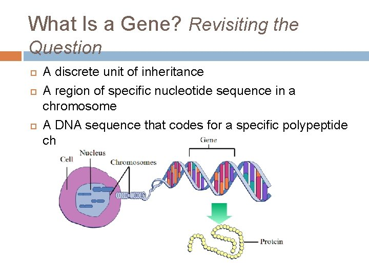 What Is a Gene? Revisiting the Question A discrete unit of inheritance A region