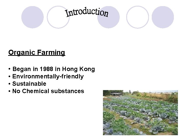 Organic Farming • Began in 1988 in Hong Kong • Environmentally-friendly • Sustainable •
