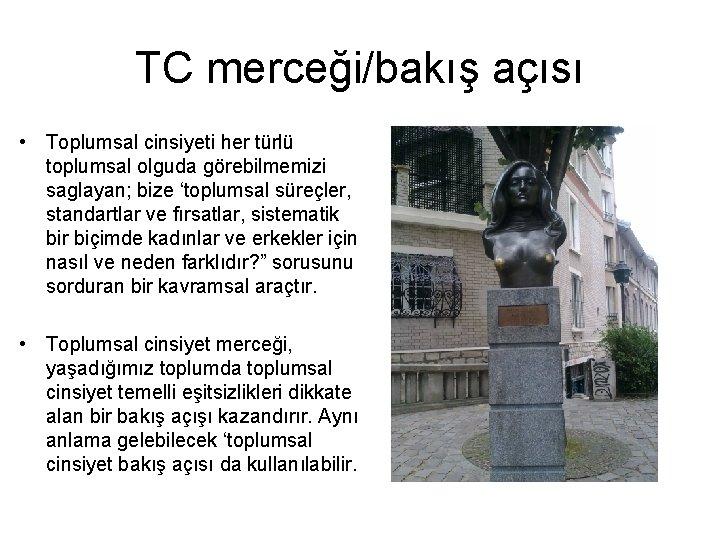 TC merceği/bakış açısı • Toplumsal cinsiyeti her türlü toplumsal olguda görebilmemizi saglayan; bize 'toplumsal