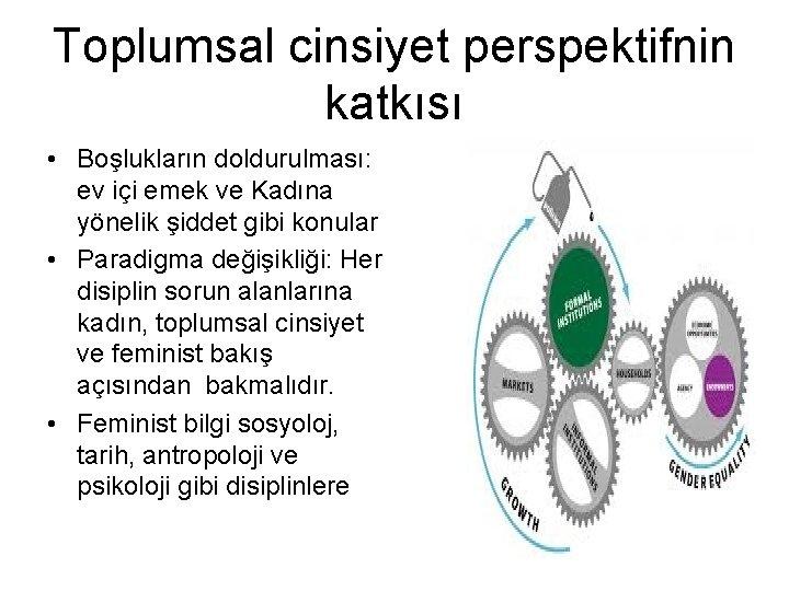 Toplumsal cinsiyet perspektifnin katkısı • Boşlukların doldurulması: ev içi emek ve Kadına yönelik şiddet