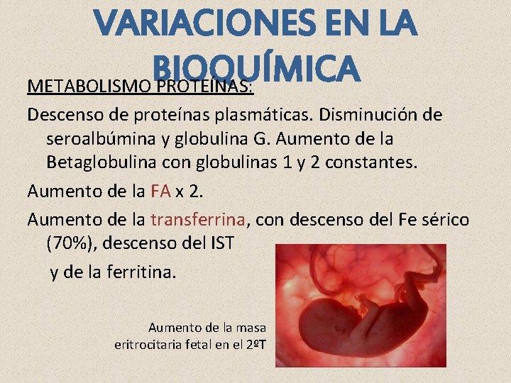 VARIACIONES EN LA BIOQUÍMICA METABOLISMO PROTEÍNAS: Descenso de proteínas plasmáticas. Disminución de seroalbúmina y