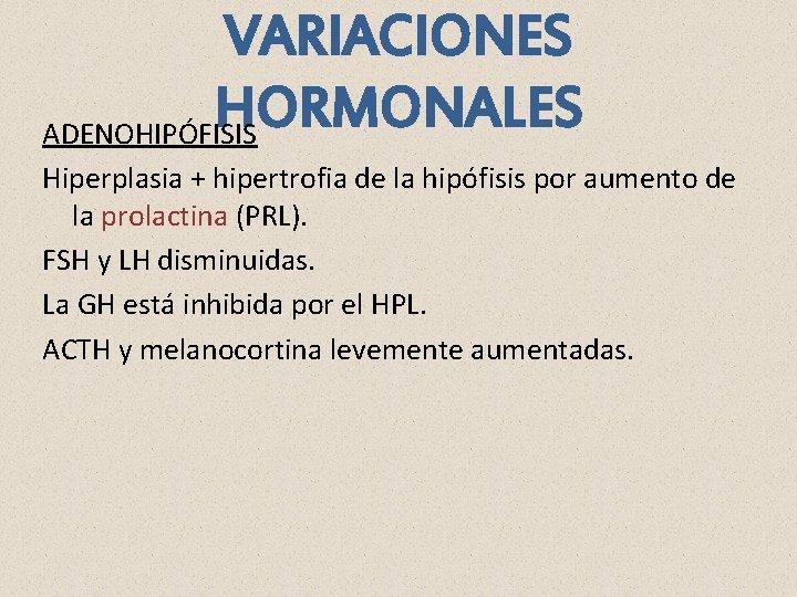 VARIACIONES HORMONALES ADENOHIPÓFISIS Hiperplasia + hipertrofia de la hipófisis por aumento de la prolactina