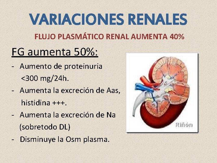 VARIACIONES RENALES FLUJO PLASMÁTICO RENAL AUMENTA 40% FG aumenta 50%: - Aumento de proteinuria
