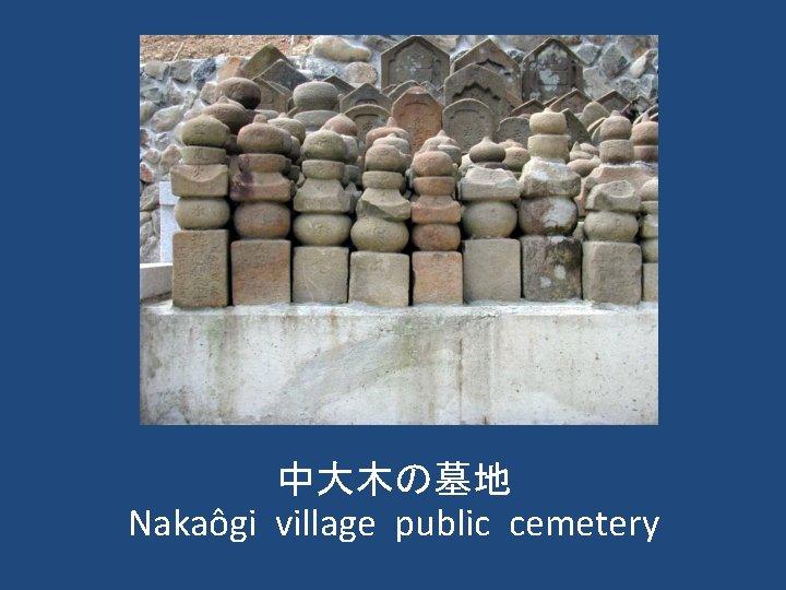 中大木の墓地 Nakaôgi village public cemetery