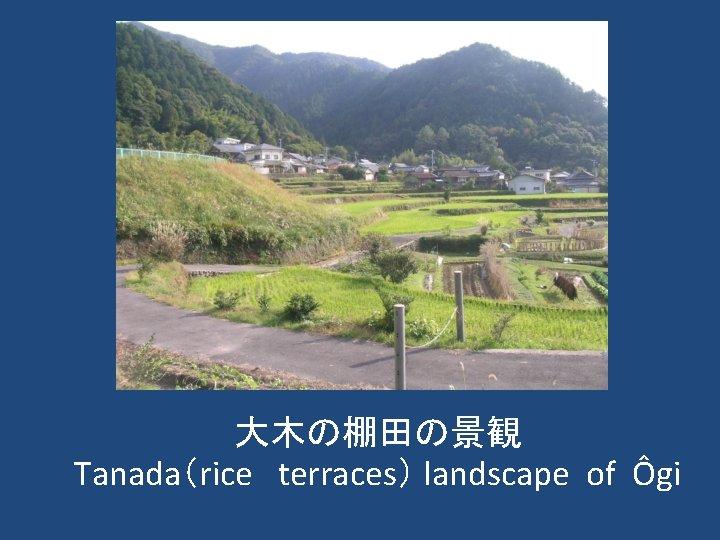 大木の棚田の景観 Tanada(rice terraces) landscape of Ôgi