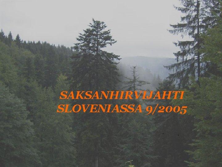 SAKSANHIRVIJAHTI SLOVENIASSA 9/2005. .