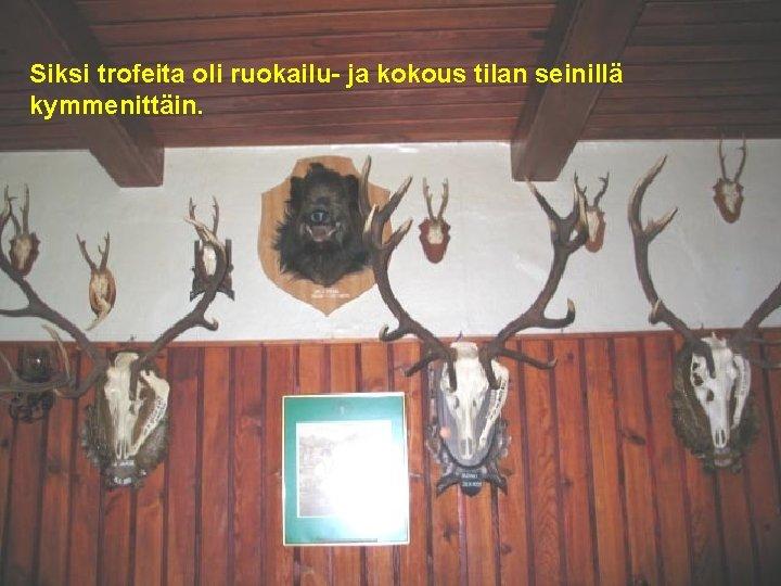 Siksi trofeita oli ruokailu- ja kokous tilan seinillä kymmenittäin. .