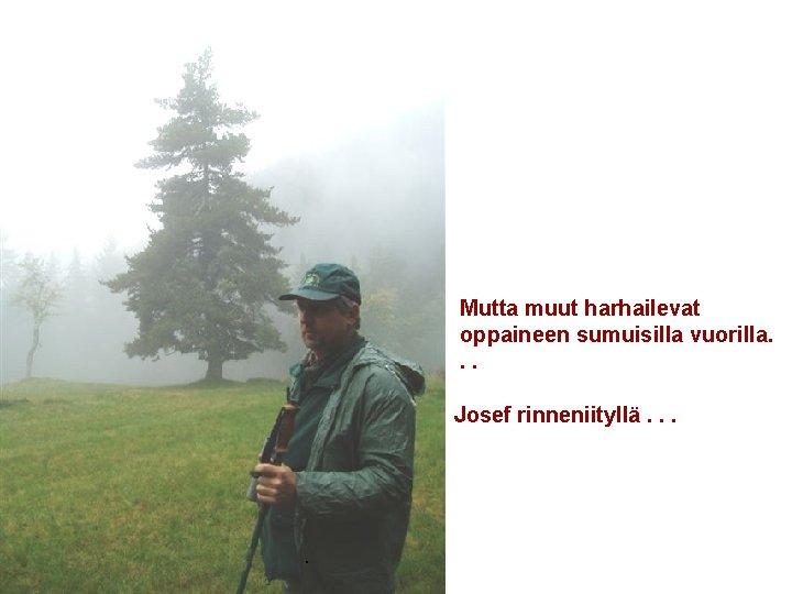 Mutta muut harhailevat oppaineen sumuisilla vuorilla. . . Josef rinneniityllä. .