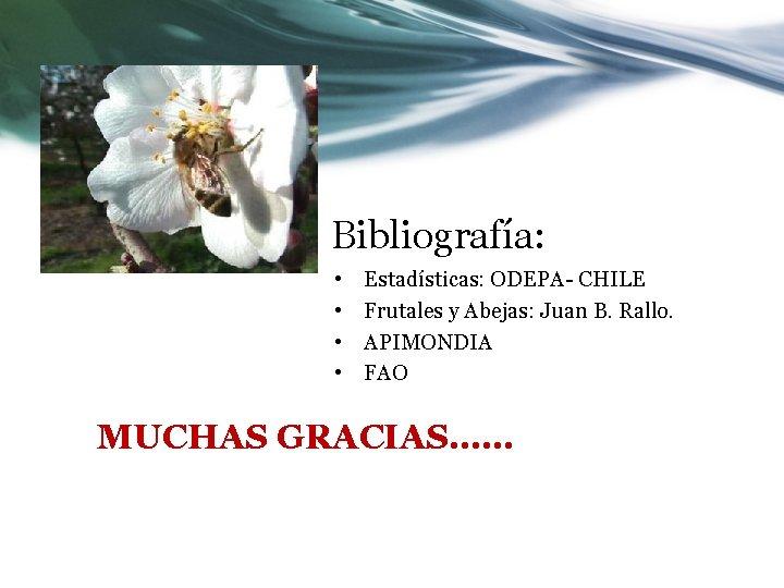 Bibliografía: • • Estadísticas: ODEPA- CHILE Frutales y Abejas: Juan B. Rallo. APIMONDIA FAO