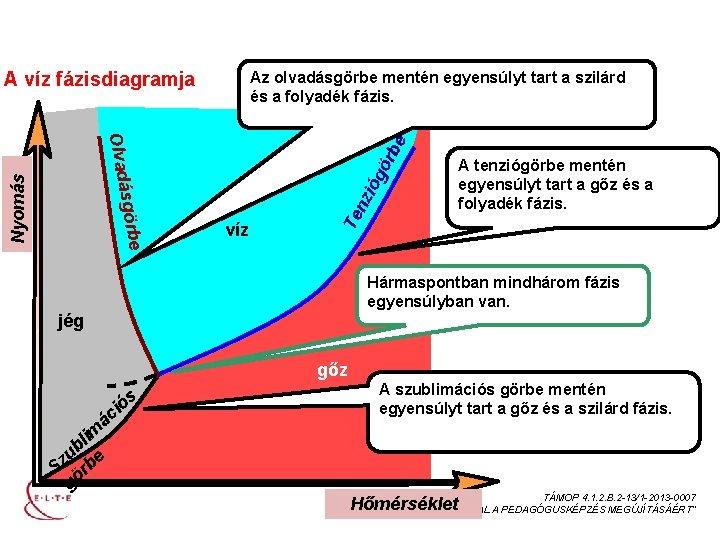 EGYKOMPONENSŰ HETEROGÉN RENDSZEREK A víz fázisdiagramja Az olvadásgörbe mentén egyensúlyt tart a szilárd és