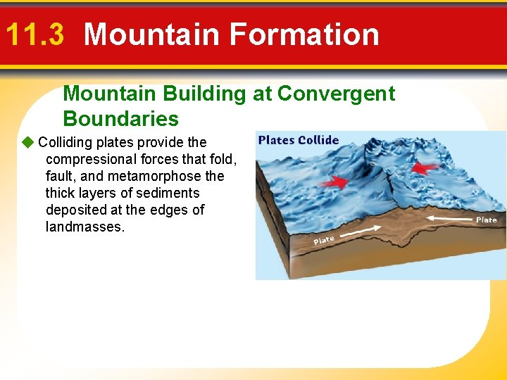 11. 3 Mountain Formation Mountain Building at Convergent Boundaries Colliding plates provide the compressional