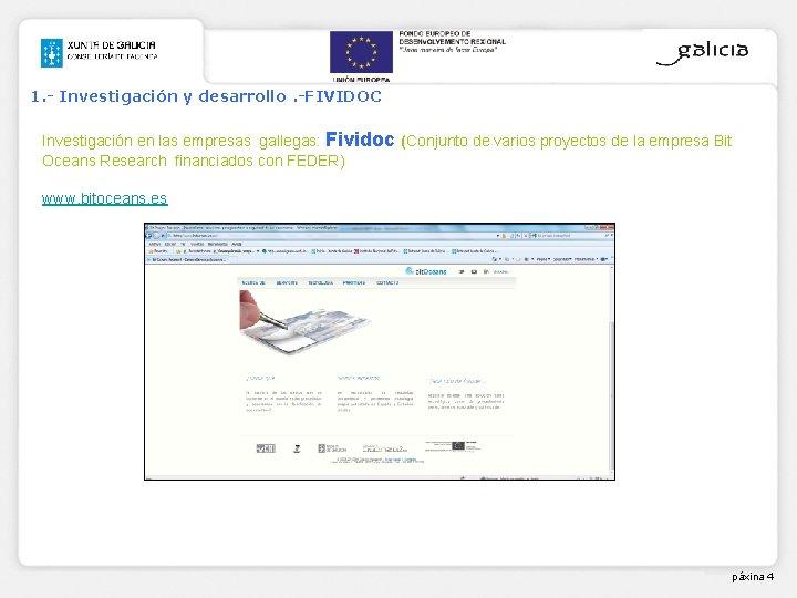 1. - Investigación y desarrollo. -FIVIDOC Investigación en las empresas gallegas: Fividoc (Conjunto de