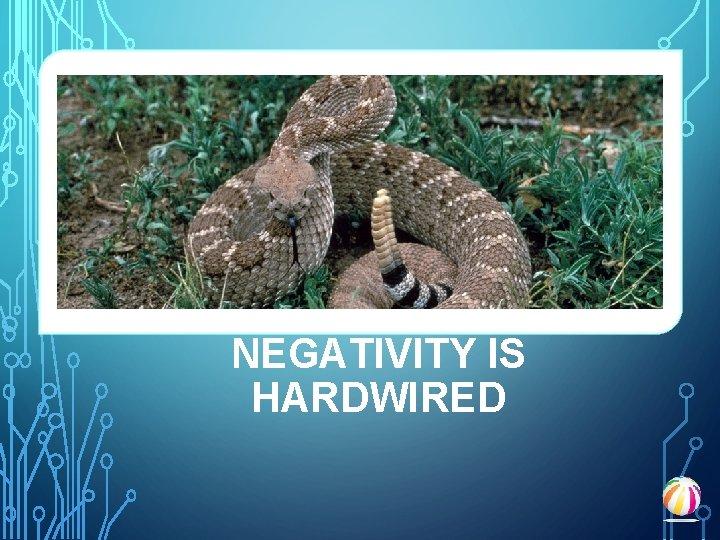NEGATIVITY IS HARDWIRED