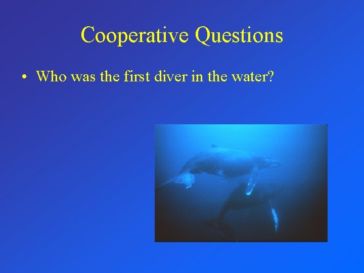 Cooperative Questions • Who was the first diver in the water?