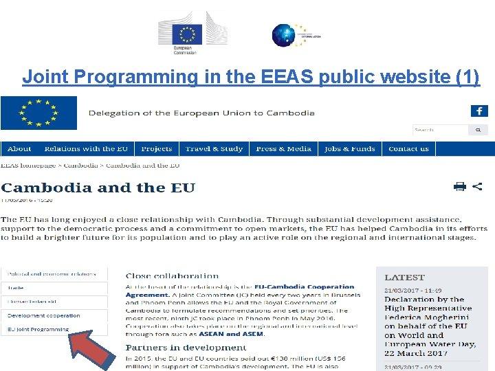 Joint Programming in the EEAS public website (1)