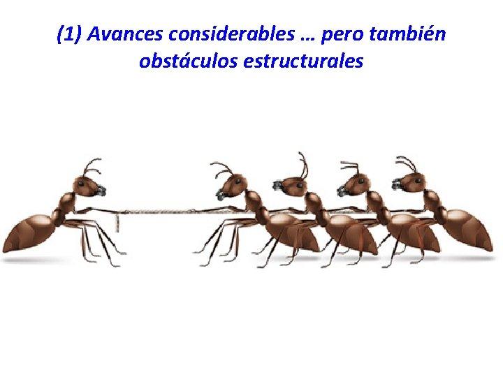 (1) Avances considerables … pero también obstáculos estructurales
