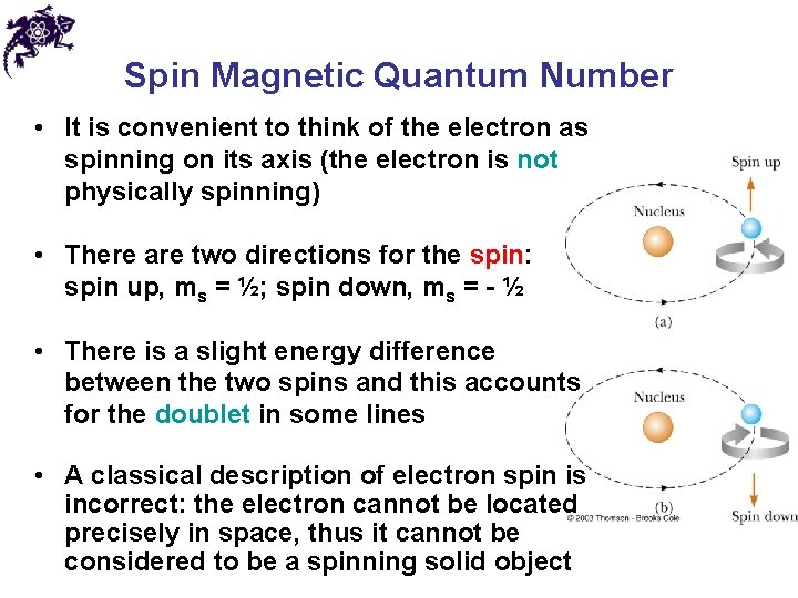 Spin Magnetic Quantum Number • It is convenient to think of the electron as