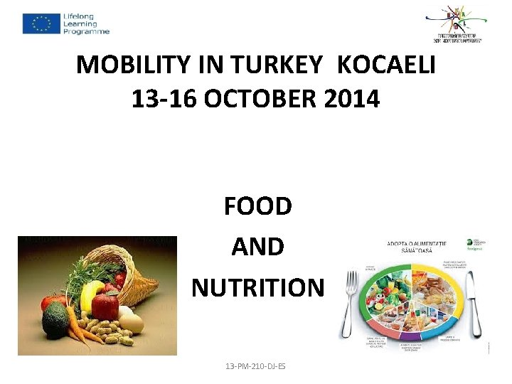 MOBILITY IN TURKEY KOCAELI 13 -16 OCTOBER 2014 FOOD AND NUTRITION 13 -PM-210 -DJ-ES