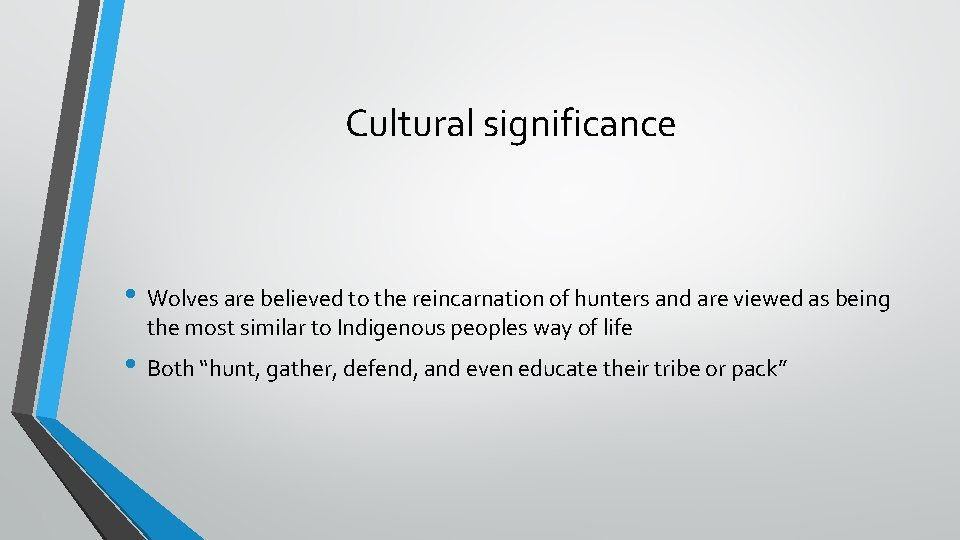 Cultural significance • Wolves are believed to the reincarnation of hunters and are viewed