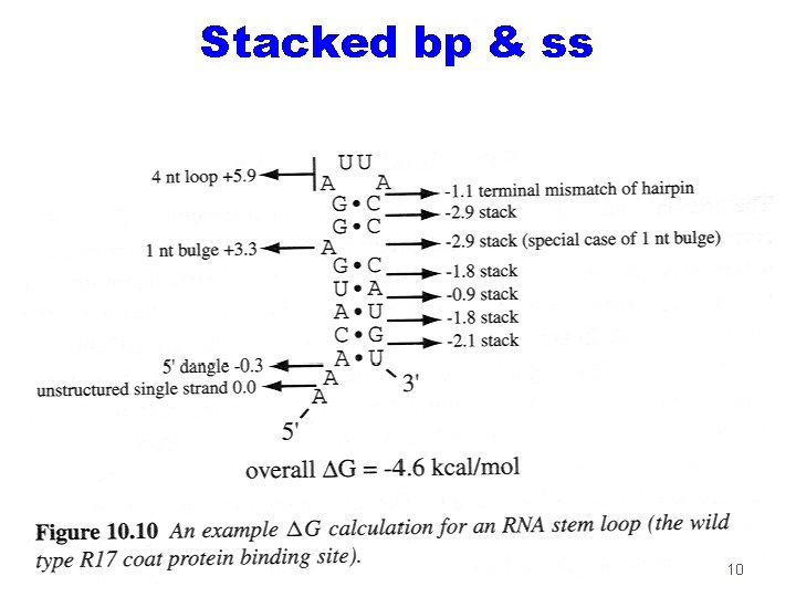 Stacked bp & ss 10