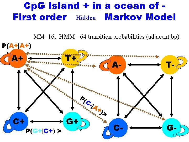 Cp. G Island + in a ocean of First order Hidden Markov Model MM=16,