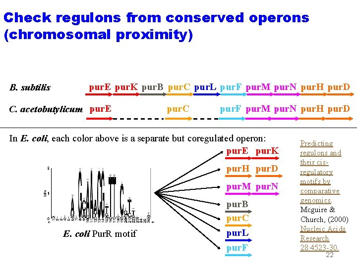 Check regulons from conserved operons (chromosomal proximity) B. subtilis pur. E pur. K pur.