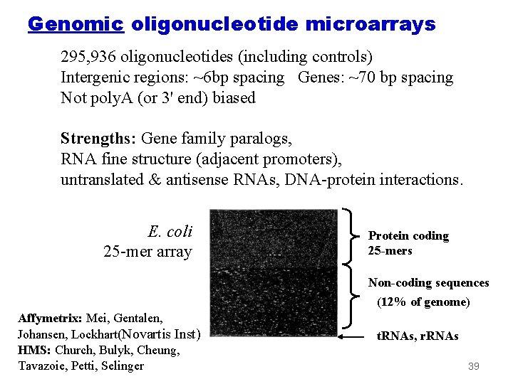 Genomic oligonucleotide microarrays 295, 936 oligonucleotides (including controls) Intergenic regions: ~6 bp spacing Genes:
