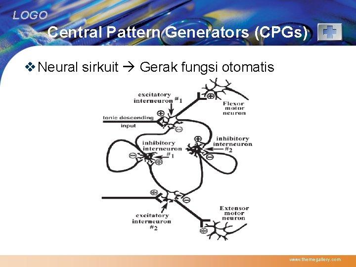 LOGO Central Pattern Generators (CPGs) v Neural sirkuit Gerak fungsi otomatis www. themegallery. com