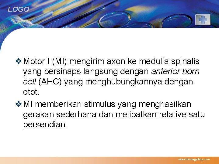 LOGO v Motor I (MI) mengirim axon ke medulla spinalis yang bersinaps langsung dengan