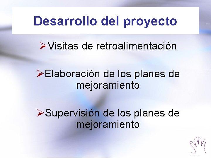 Desarrollo del proyecto ØVisitas de retroalimentación ØElaboración de los planes de mejoramiento ØSupervisión de