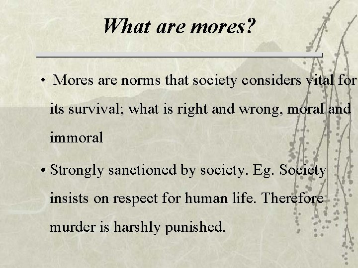 What are mores? • Mores are norms that society considers vital for its survival;