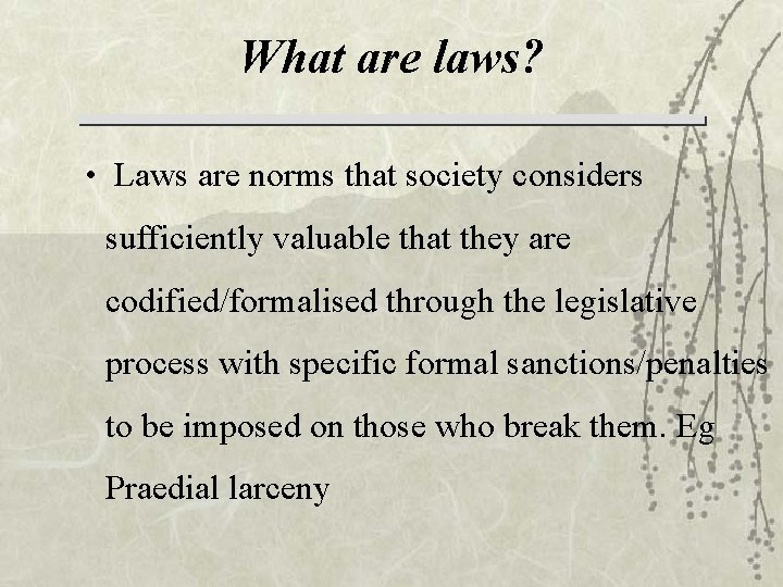 What are laws? • Laws are norms that society considers sufficiently valuable that they
