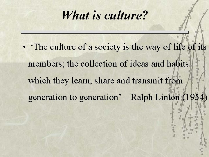 What is culture? • 'The culture of a society is the way of life
