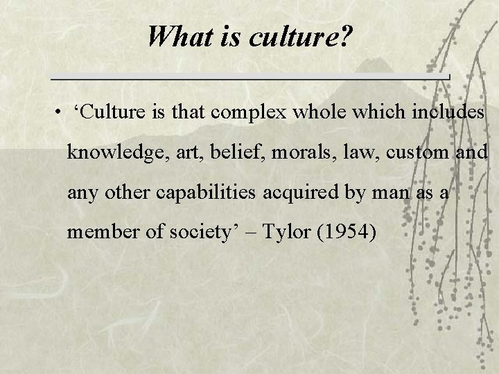 What is culture? • 'Culture is that complex whole which includes knowledge, art, belief,