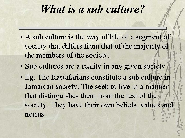 What is a sub culture? • A sub culture is the way of life