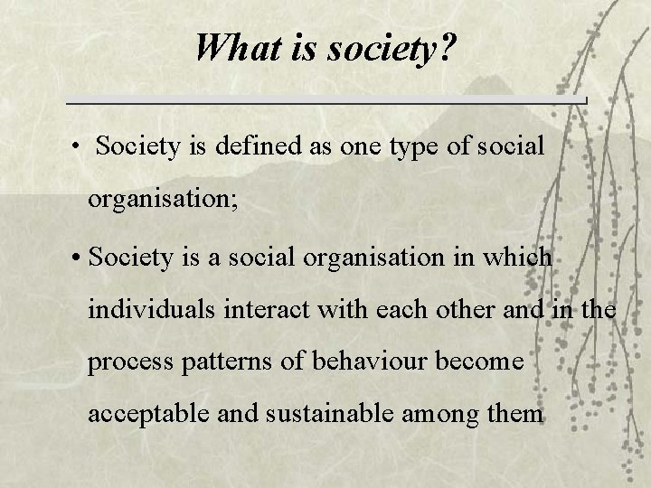 What is society? • Society is defined as one type of social organisation; •