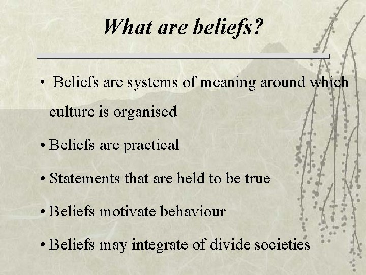 What are beliefs? • Beliefs are systems of meaning around which culture is organised