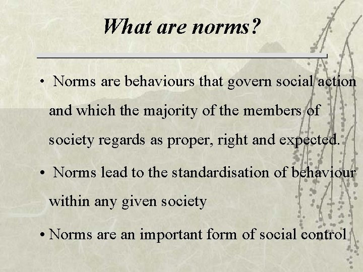 What are norms? • Norms are behaviours that govern social action and which the
