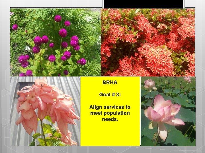 54 BRHA Goal # 3: Align services to meet population needs.