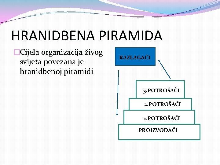 HRANIDBENA PIRAMIDA �Cijela organizacija živog svijeta povezana je hranidbenoj piramidi RAZLAGAĆI 3. POTROŠAČI 2.