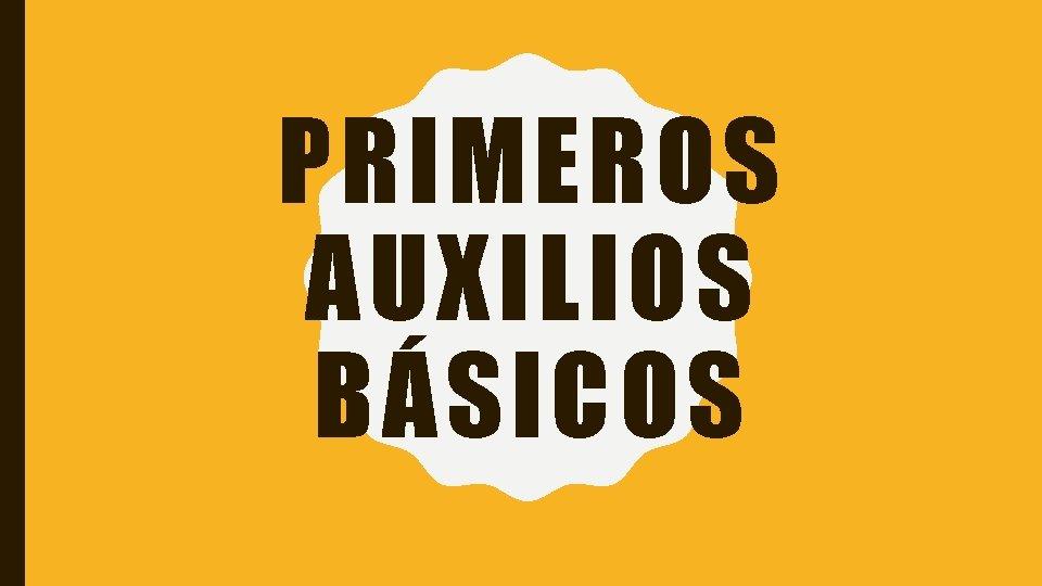 PRIMEROS AUXILIOS BÁSICOS