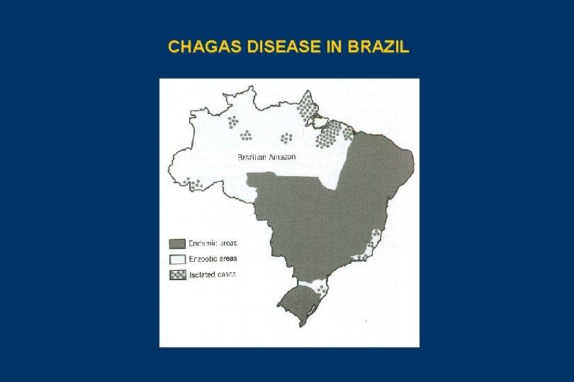 CHAGAS DISEASE IN BRAZIL