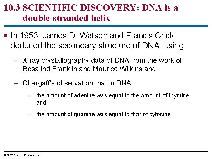 10. 3 SCIENTIFIC DISCOVERY: DNA is a double-stranded helix § In 1953, James D.