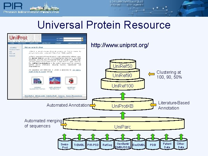 Universal Protein Resource http: //www. uniprot. org/ Uni. Ref 50 Clustering at 100, 90,