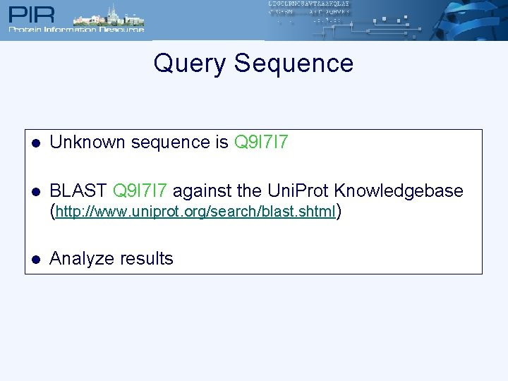Query Sequence l Unknown sequence is Q 9 I 7 I 7 l BLAST
