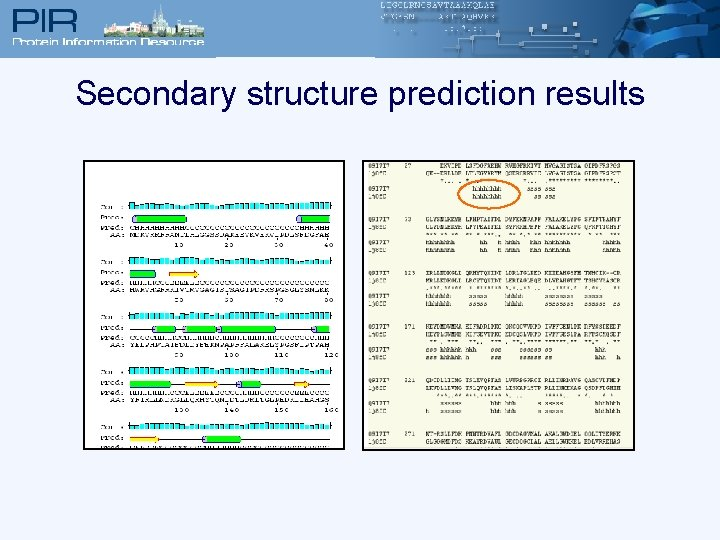 Secondary structure prediction results