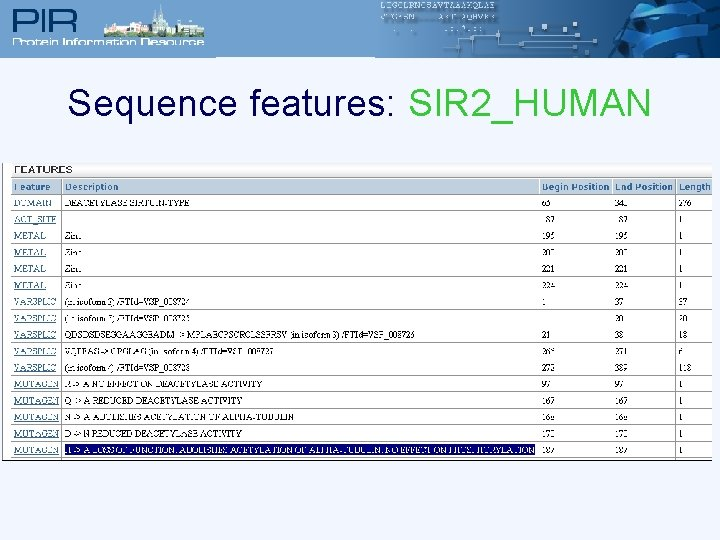 Sequence features: SIR 2_HUMAN