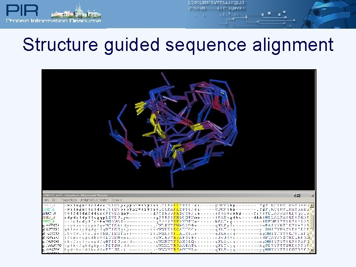 Structure guided sequence alignment