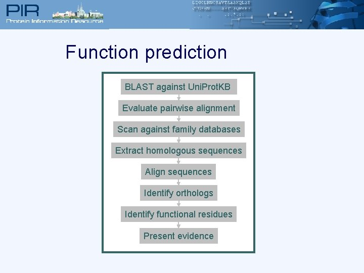 Function prediction BLAST against Uni. Prot. KB Evaluate pairwise alignment Scan against family databases