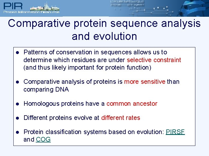 Comparative protein sequence analysis and evolution l Patterns of conservation in sequences allows us